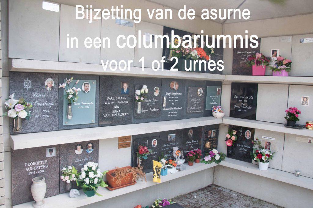 columbariumnis